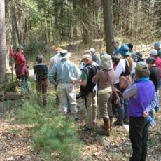 Keystone Cooperators learn about forest management