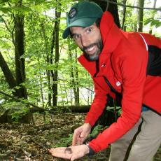 Ben Padilla finds frog in Greenfield, Mass