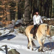 Horses and riders enjoy riding trails on Ben and Susie Feldman's property in Athol