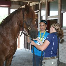 Summer 4-H SET camp students learn equine care