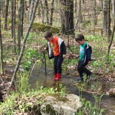 Children explore wetlands and salamanders on Feldman's property, Athol