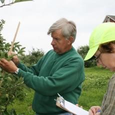 Jim Krupa and Maureen Vezina, CSO assistants, measure branch growth
