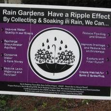 Rain Garden signage (Photo: J. Stacy)