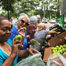 Women choose fresh vegetables right off the mobile market at Saab Court, Springfield