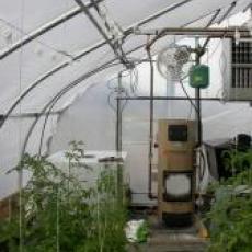 Corn boiler at Atlas Farms