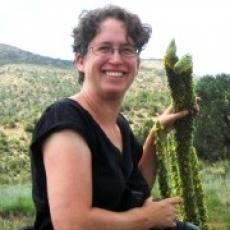 Paige Warren, associate professor, Environmental Conservation, UMass, Amherst