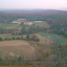 Kosinski Farms
