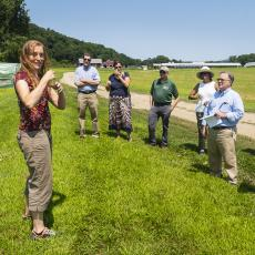 Lynn Adler biology, discusses her research on disease transmission in pollinators.