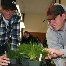 Students studying turf plugs
