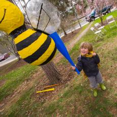 A bee pinata takes a hit and spills honey candy and bee puppets