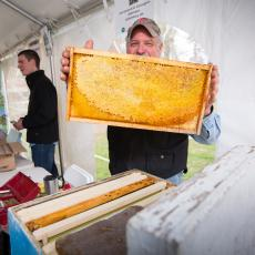 Jack Borden shows a hive frame