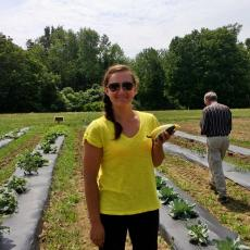 Cassie Sefton, student intern with first vegetables off the land