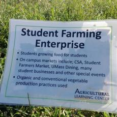 Student Farming Enterprise gets their stake in the ground at ALC