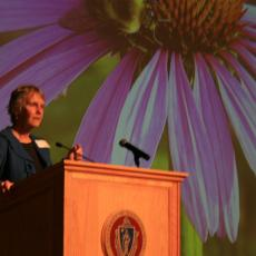 Dr.. Lois Berg Stack: Univ of Maine-how to design pollinator support plantings
