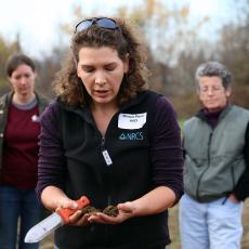 Soil samples shown