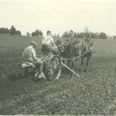 Two men planting potatoes