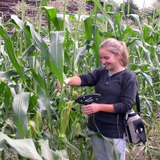 Amanda Brown sampling corn at the South Deerfield farm
