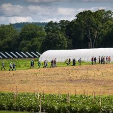 Hoophouse and PV panels at the South Deerfield farm