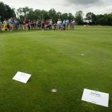 Close up view of turf disease management research plots at the Joseph Troll Turf Research Center