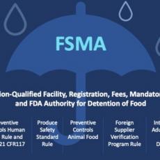 FSMA Chart