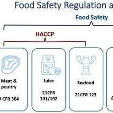 Food Safety Regs