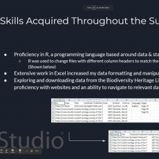 Skills Acquired Throughout Summer Project