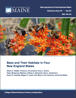 Bees and Their Habitats