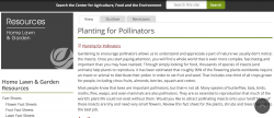 UMass Planting for Pollinators