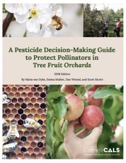 Cornell Guide to Protecting Pollinators Screenshot