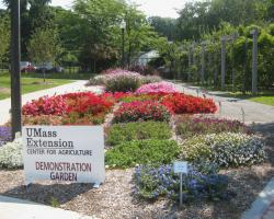 UMass Amherst Demonstration Gardens