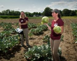 Mass Ag Field Day research updates