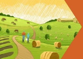 2017 Agriculture Census results
