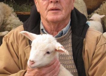 Joe Major, Mass 4-H volunteer and national award-winner with lamb