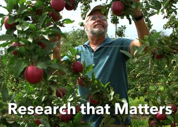 New video on High Density Apple Orchards