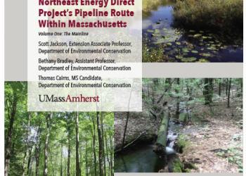 Cover of Pipeline Assessment document