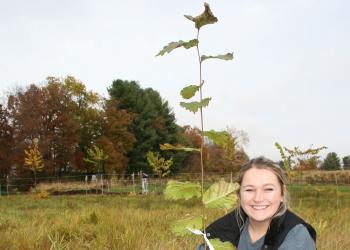 Tara McElhinney plants elm tree in Dakin Field