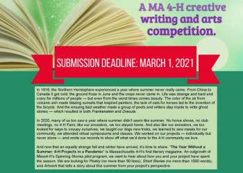 flyer for writing contest