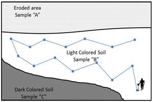 Best method to collect soil samples