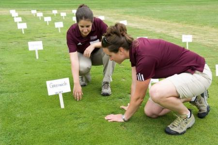 Michelle DaCosta and Lindsey Hoffman inspect turfgrass at Joseph Troll Turf Research Facility