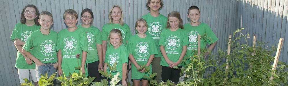 4-h green giants group