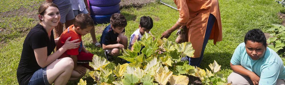 Amanda McCabe-Hernandez harvest vegetables with children at Robinson Gardens in Springfield