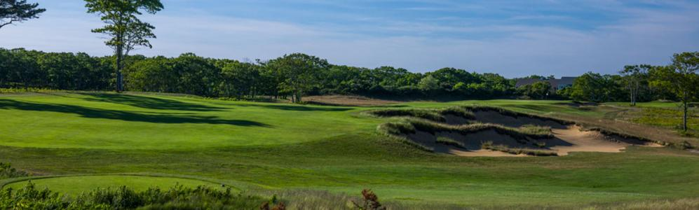 Vineyard Golf Course, uses organic treatement for management