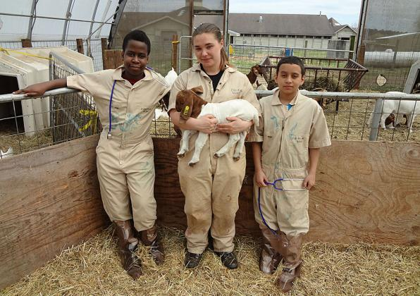 youth with goat