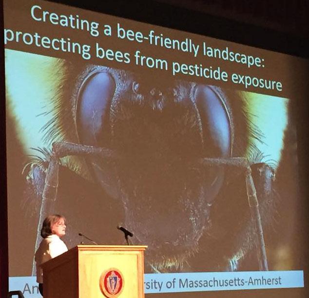 Dr. Anne Averill moderates Pollinator Health Symposium