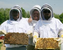 Lebeaux, Skyrm, Sieger hold full bee frames