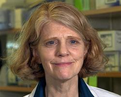 Kathleen Arcaro, environmental toxicologist in the University's Department of Veterinary and Animal Sciences