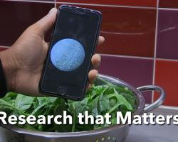 Research on Rapid Detection of Harmful Bacteria in Food and Water