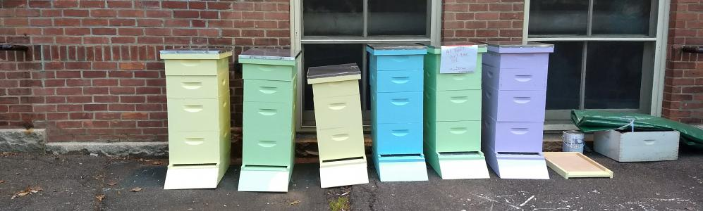 Painted Bee Hives