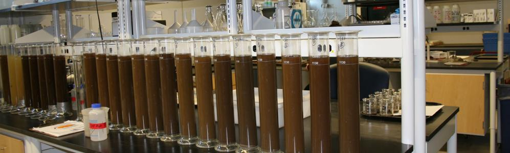 Soil and plant nutrient testing laboratory turnaround for Soil and plant lab