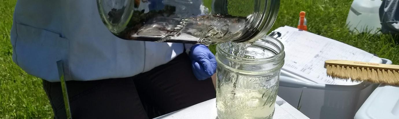 sampling for mites